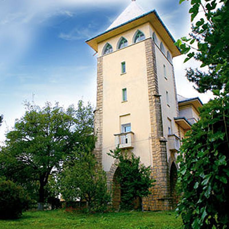 https://www.cotnari.ro/continut/uploads/2017/07/Castelul_Cotnari.png